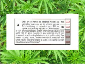 Cannabis Business Tax