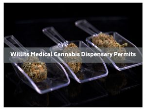 willits medical cannabis dispensary permit