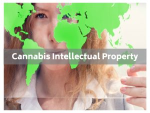 Cannabis IP Intellectual Property
