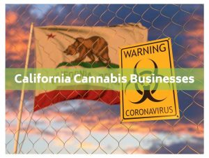 california cannabis businesses